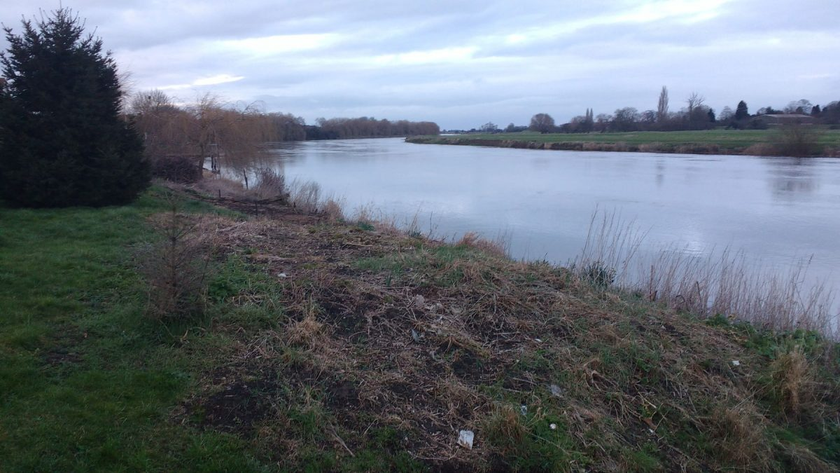 River Trent at Muskham Ferry