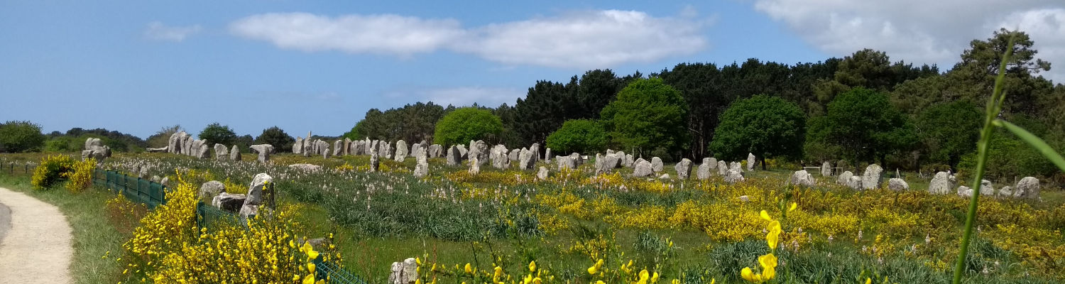 A corner of the Carnac Standing Stones