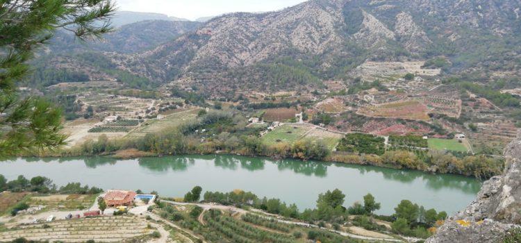 Ebro Surprises